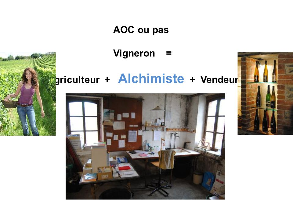 Agriculteur + Alchimiste + Vendeur