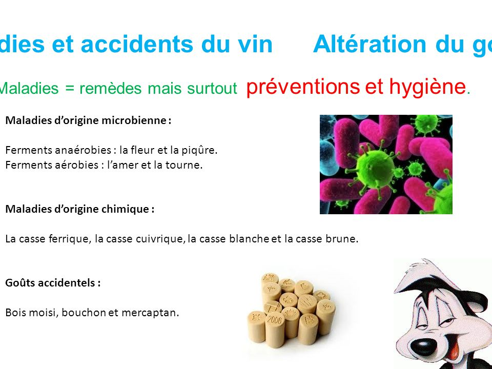 Maladies et accidents du vin Altération du goût