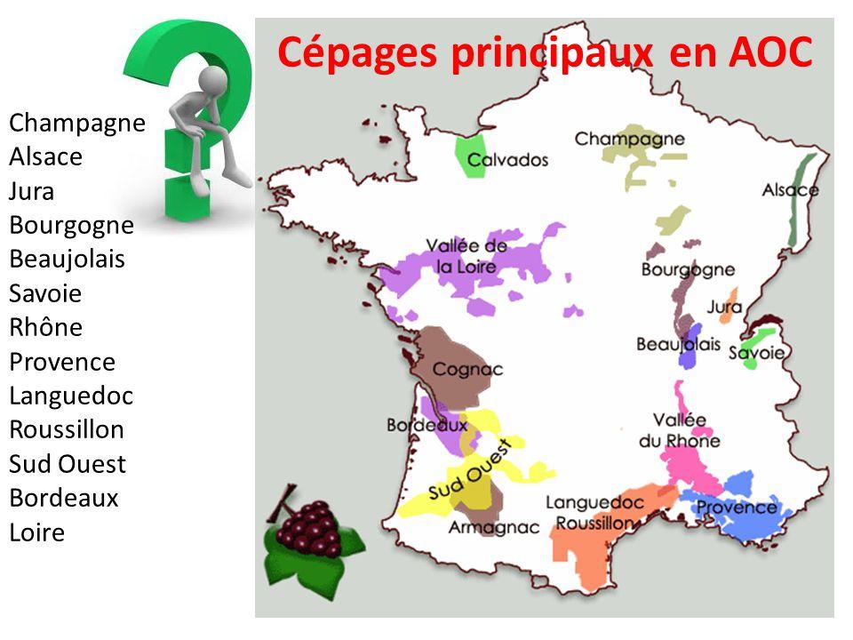 Champagne Alsace Jura Bourgogne Beaujolais Savoie Rhône Provence