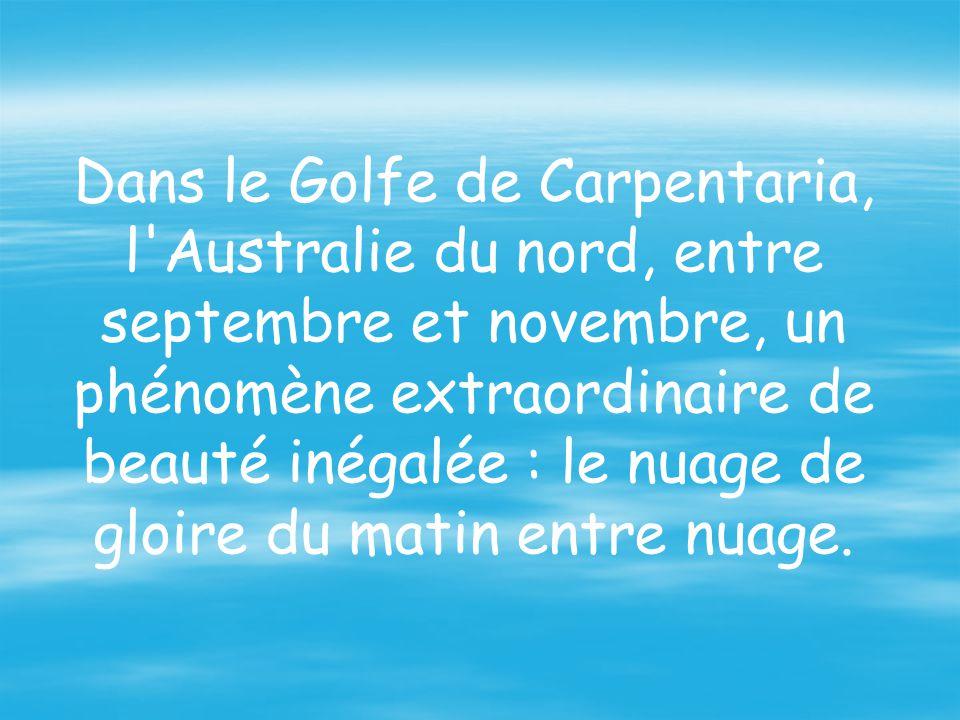 Dans le Golfe de Carpentaria, l Australie du nord, entre septembre et novembre, un phénomène extraordinaire de beauté inégalée : le nuage de gloire du matin entre nuage.