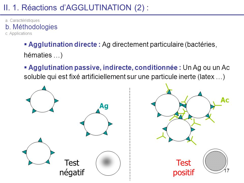 II. 1. Réactions d'AGGLUTINATION (2) :