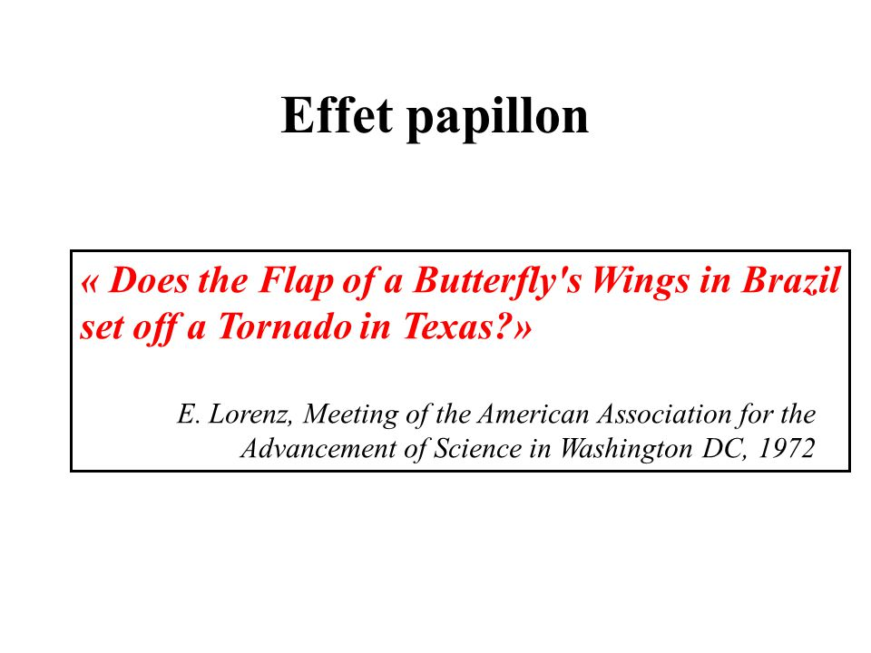 Effet papillon « Does the Flap of a Butterfly s Wings in Brazil set off a Tornado in Texas »