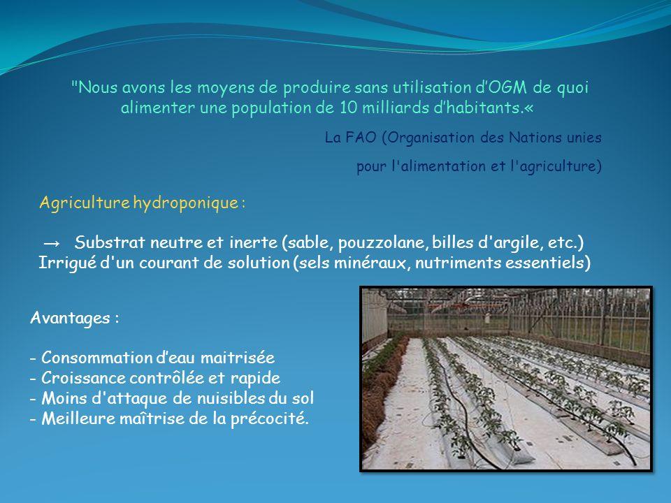 Agriculture hydroponique :