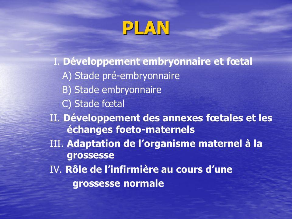 PLAN I. Développement embryonnaire et fœtal A) Stade pré-embryonnaire