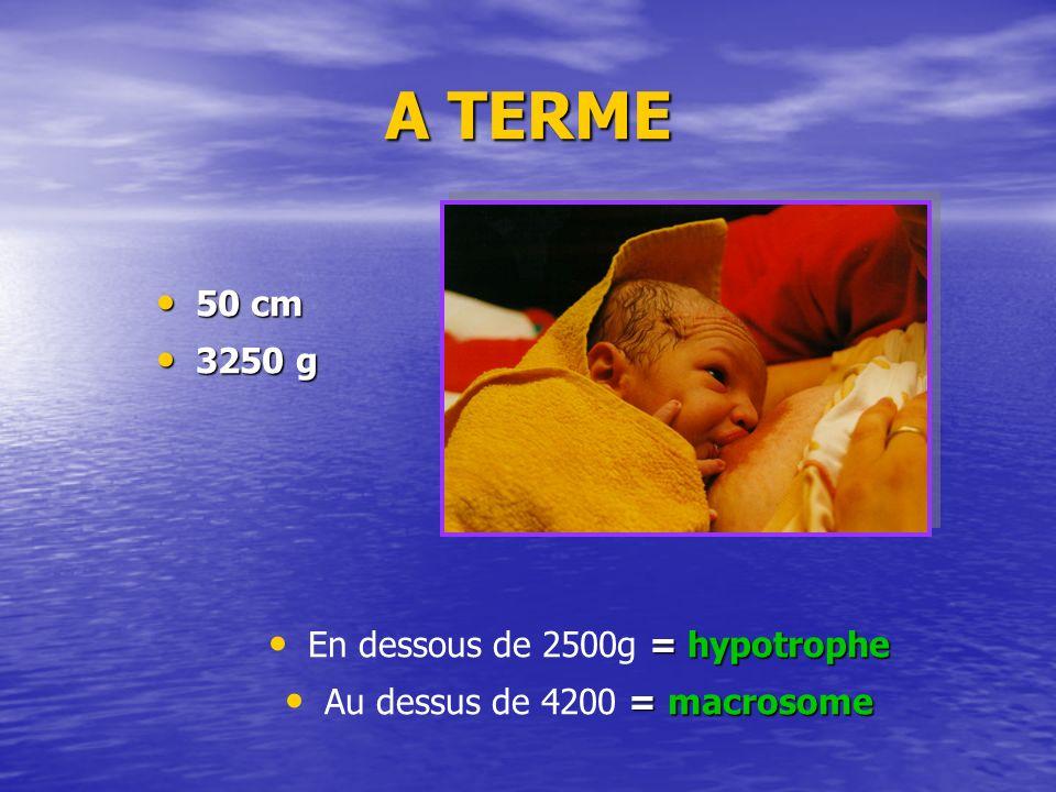 A TERME 50 cm 3250 g En dessous de 2500g = hypotrophe