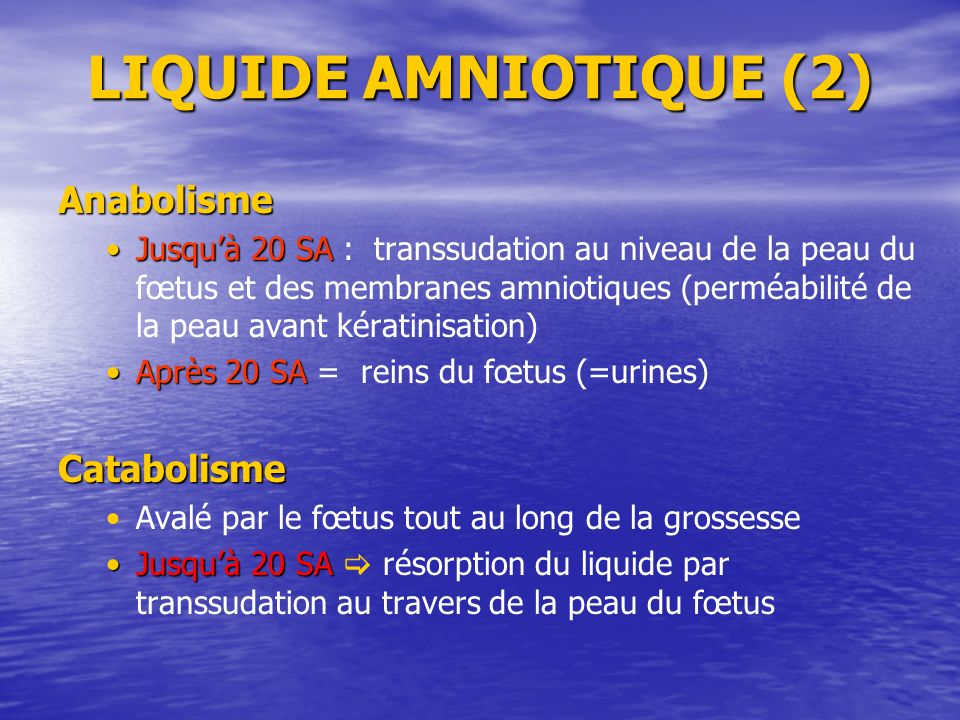 LIQUIDE AMNIOTIQUE (2) Anabolisme Catabolisme