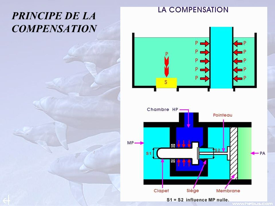 PRINCIPE DE LA COMPENSATION