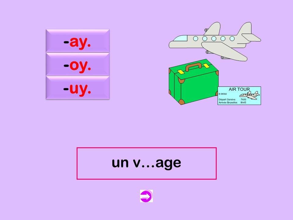 c -ay. -oy. -uy. un v…age un voyage