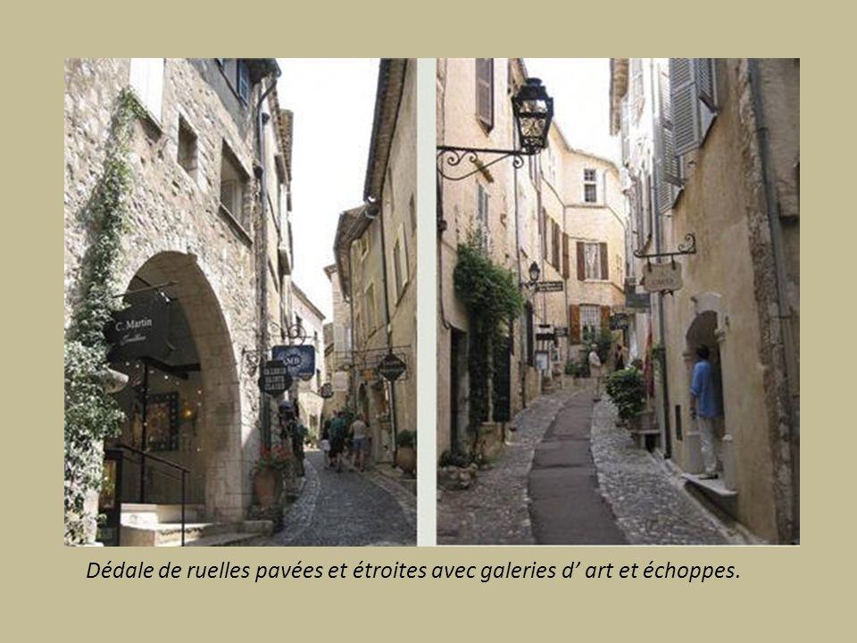 Dédale de ruelles pavées et étroites avec galeries d' art et échoppes.