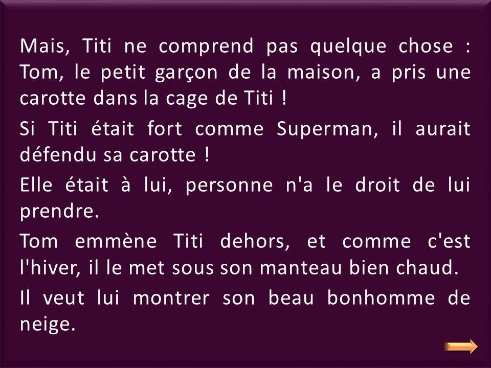 Mais, Titi ne comprend pas quelque chose : Tom, le petit garçon de la maison, a pris une carotte dans la cage de Titi !
