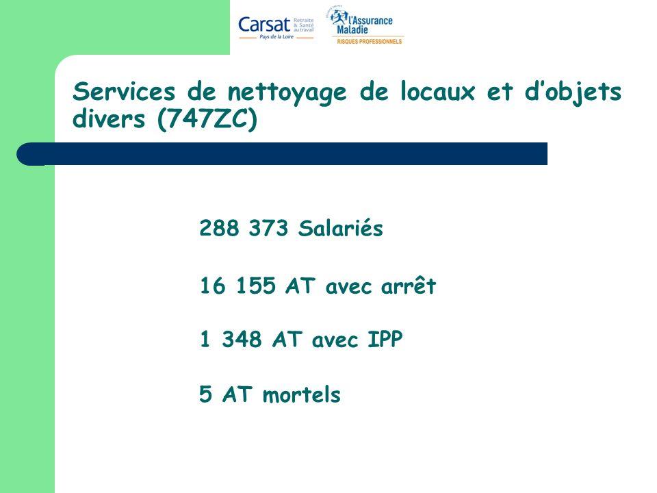 Services de nettoyage de locaux et d'objets divers (747ZC)