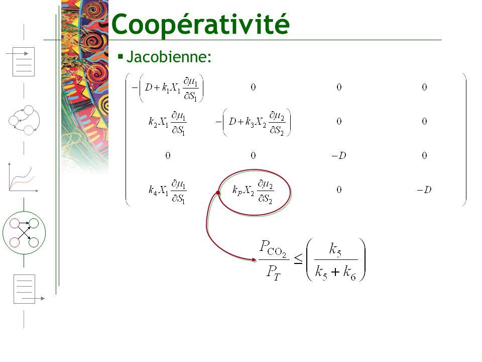Coopérativité Jacobienne: