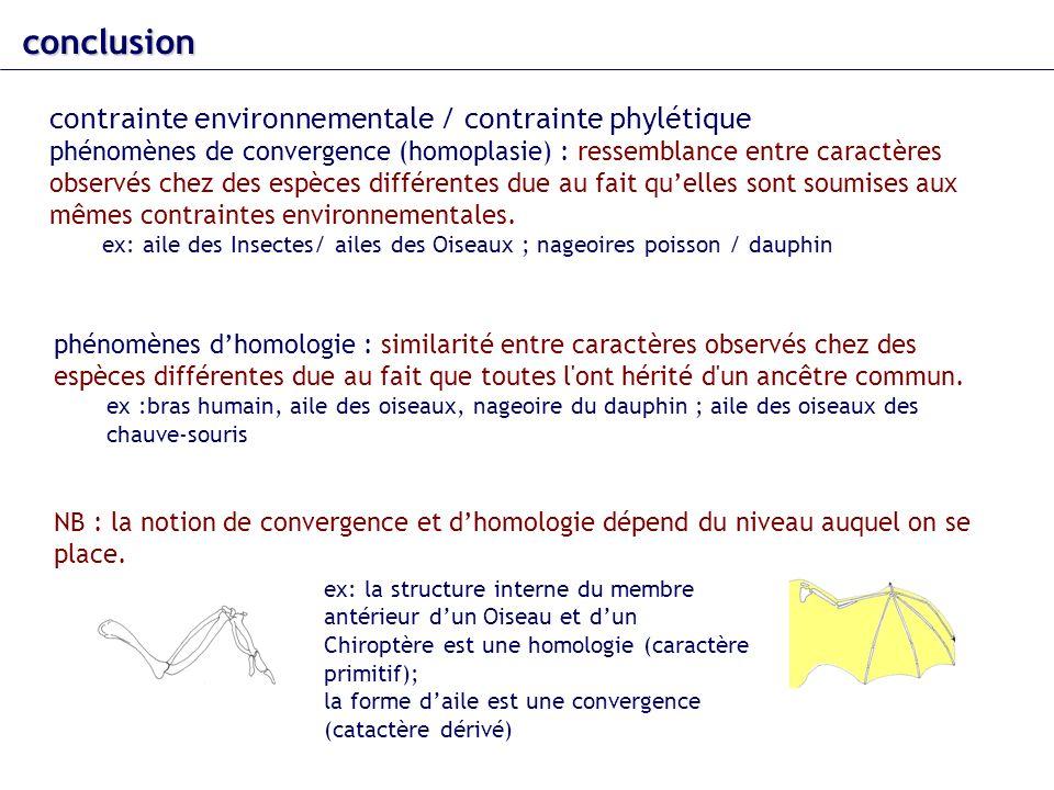 conclusion contrainte environnementale / contrainte phylétique