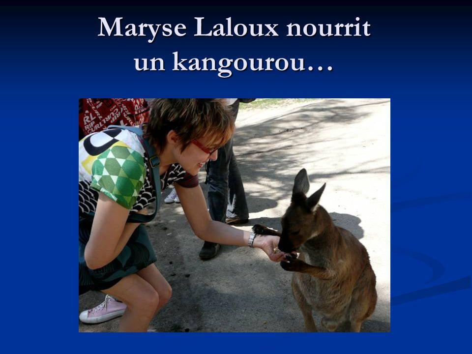 Maryse Laloux nourrit un kangourou…