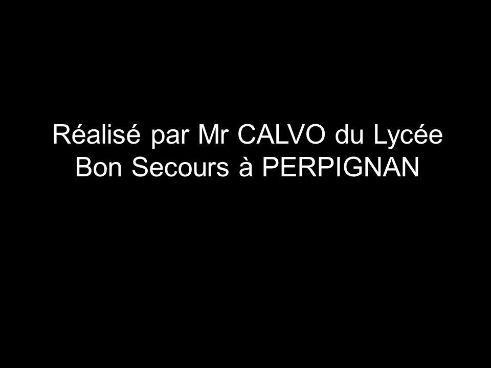 Réalisé par Mr CALVO du Lycée Bon Secours à PERPIGNAN