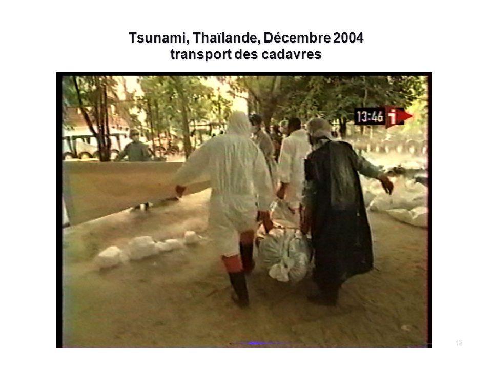 Tsunami, Thaïlande, Décembre 2004 transport des cadavres