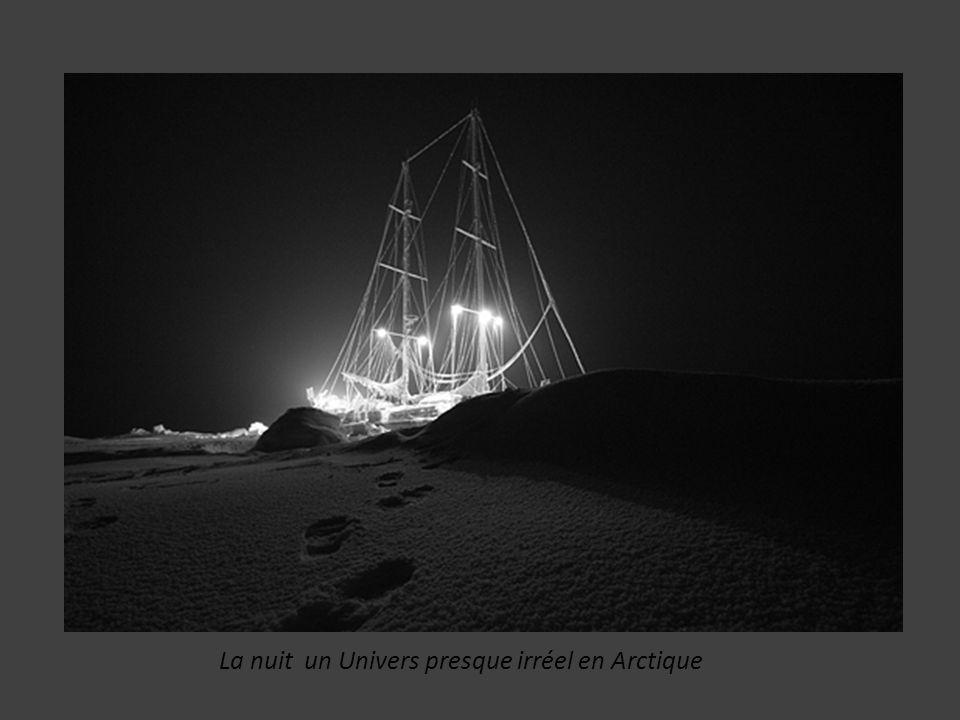 La nuit un Univers presque irréel en Arctique