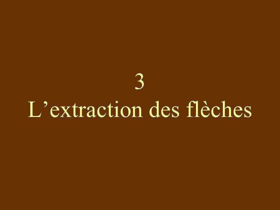 3 L'extraction des flèches
