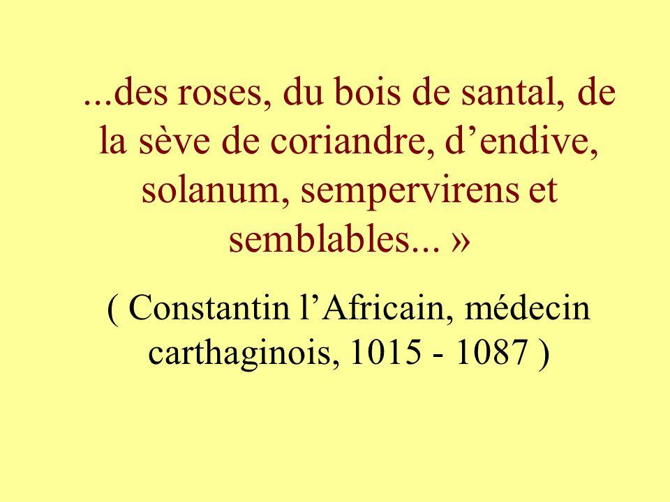 ( Constantin l'Africain, médecin carthaginois, 1015 - 1087 )