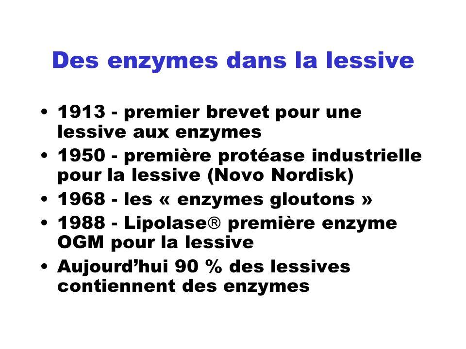 Des enzymes dans la lessive