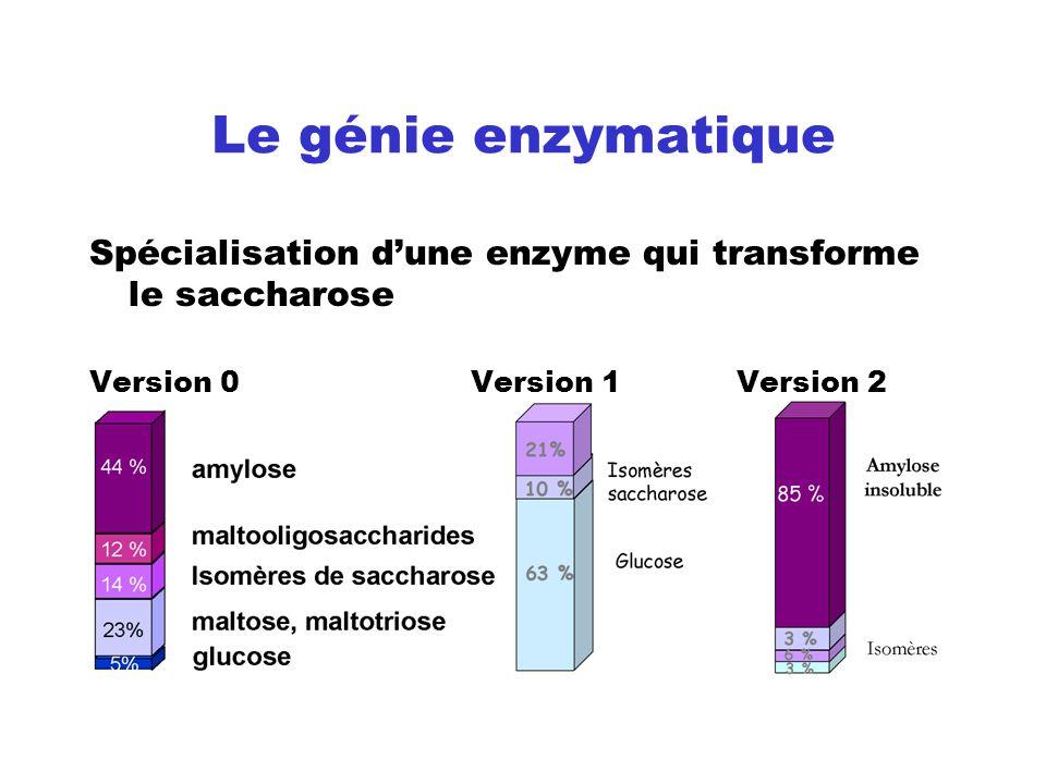 Le génie enzymatique Spécialisation d'une enzyme qui transforme le saccharose.