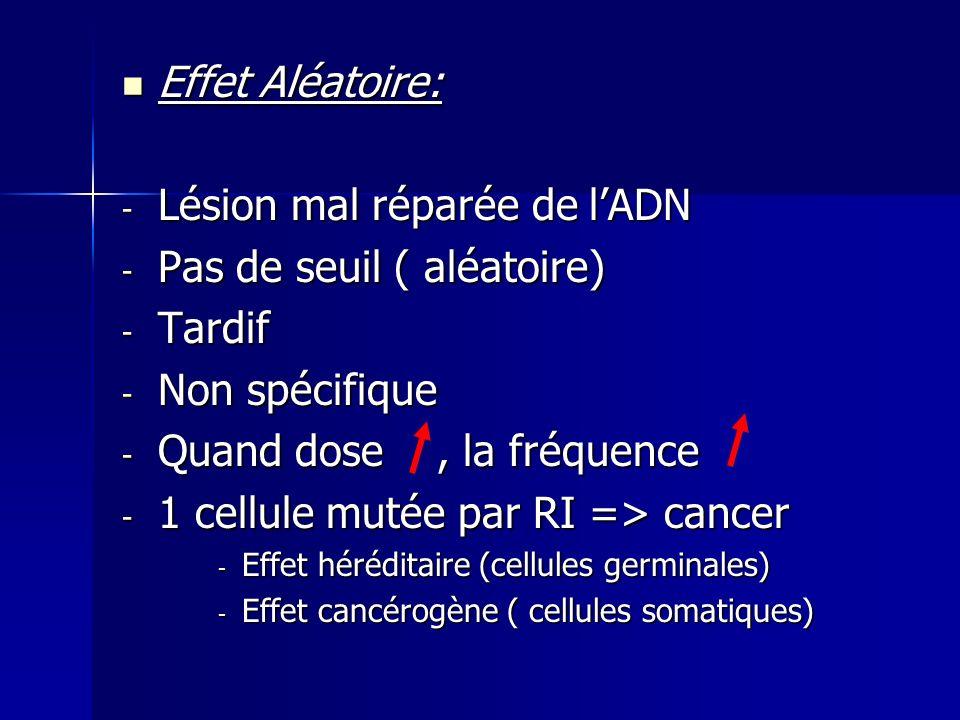 Lésion mal réparée de l'ADN Pas de seuil ( aléatoire) Tardif