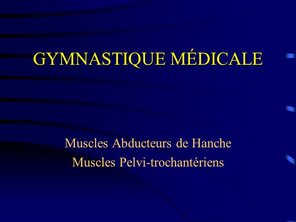 Muscles Abducteurs de Hanche Muscles Pelvi-trochantériens