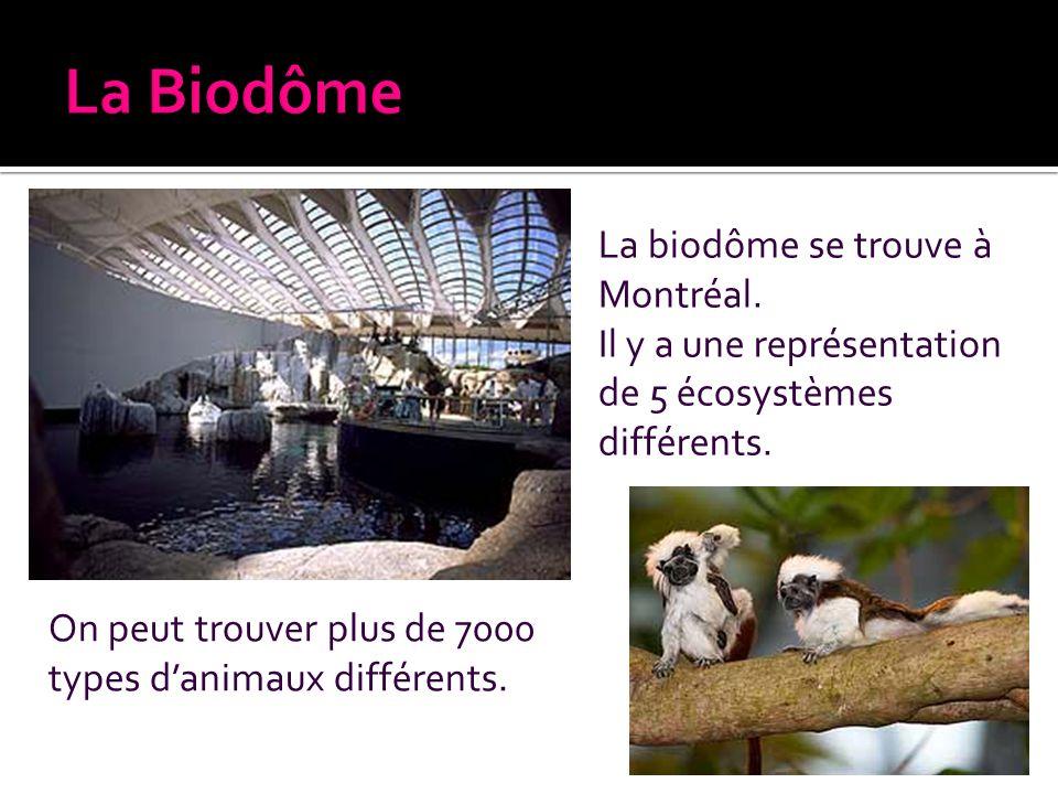 La Biodôme La biodôme se trouve à Montréal.