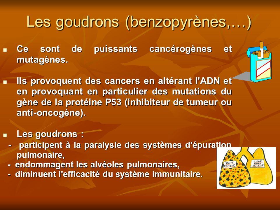 Les goudrons (benzopyrènes,…)