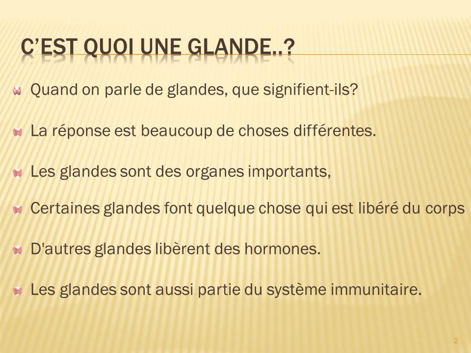 C'est quoi une glande.. Quand on parle de glandes, que signifient-ils La réponse est beaucoup de choses différentes.