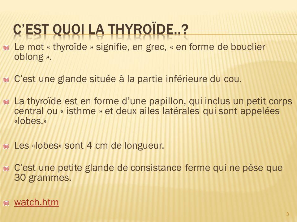 C'est quoi la thyroïde.. Le mot « thyroïde » signifie, en grec, « en forme de bouclier oblong ».
