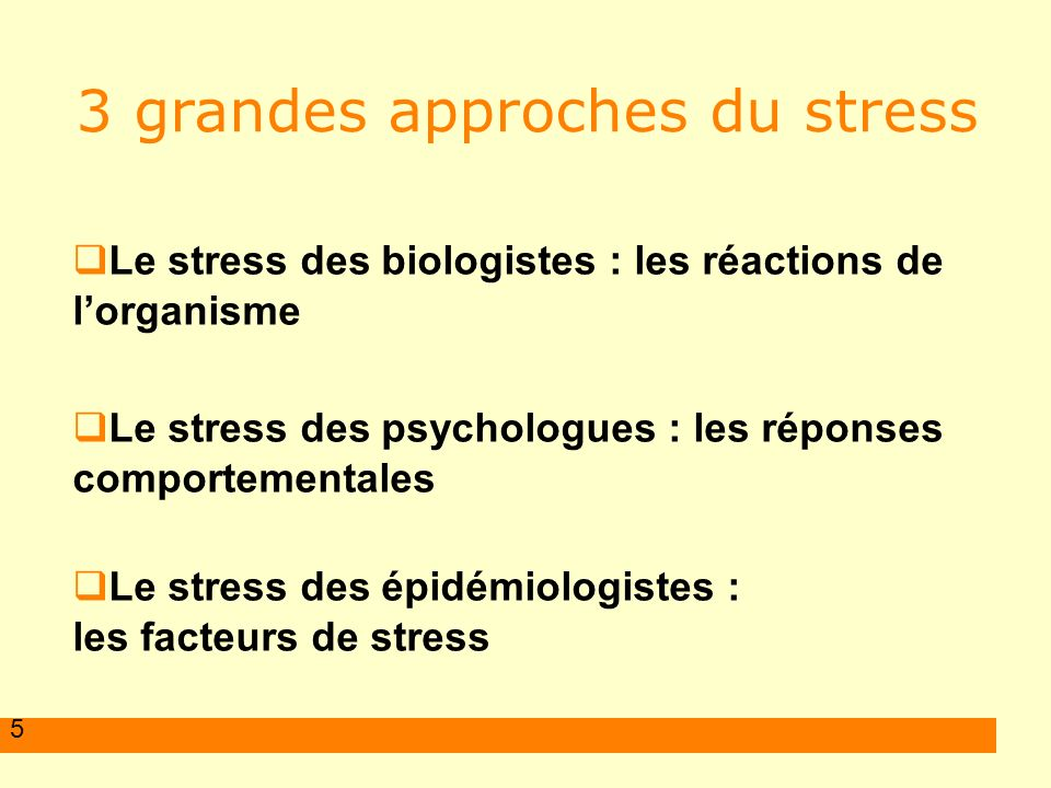 3 grandes approches du stress