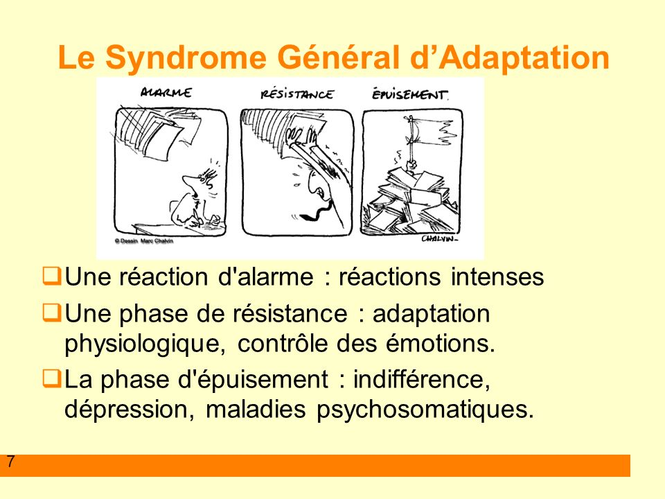 Le Syndrome Général d'Adaptation