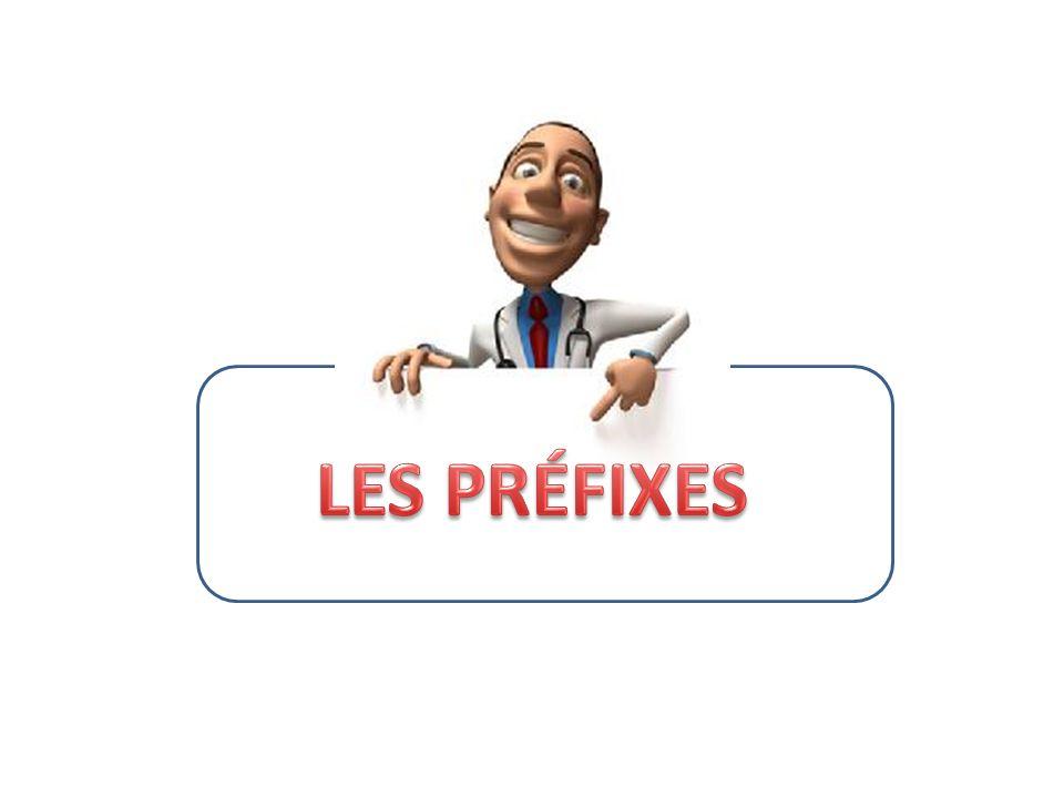 LES PRÉFIXES