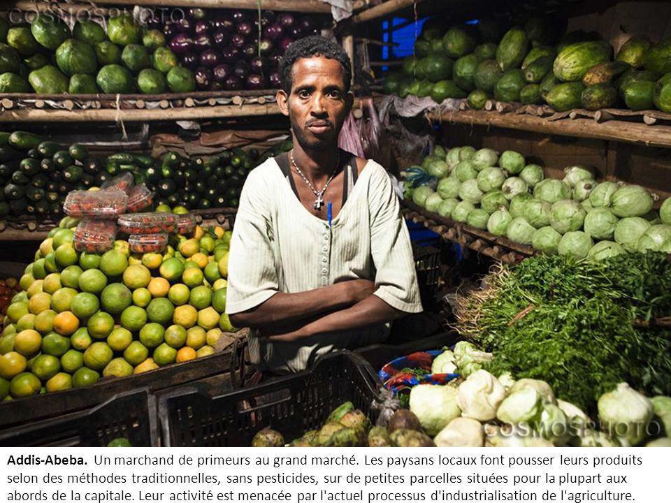 Addis-Abeba. Un marchand de primeurs au grand marché