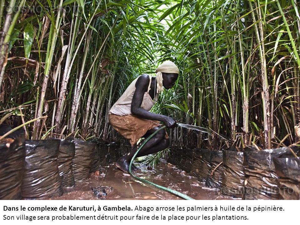 Dans le complexe de Karuturi, à Gambela