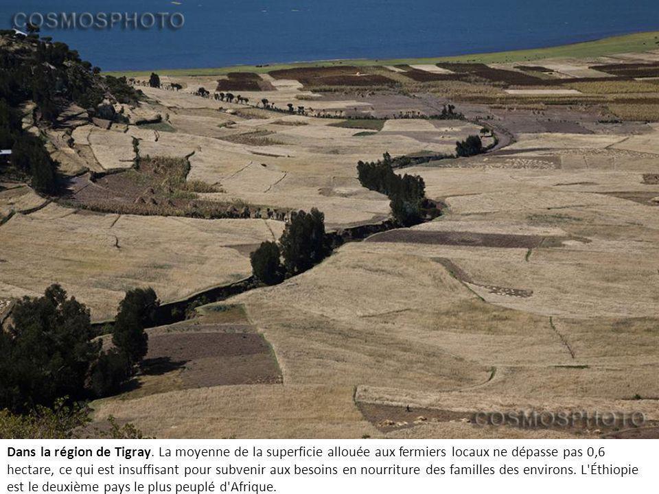 Dans la région de Tigray