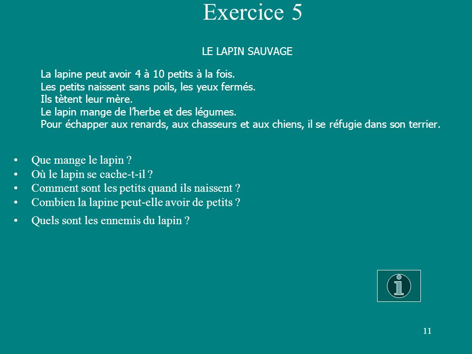LE LAPIN SAUVAGE Exercice 5 Que mange le lapin