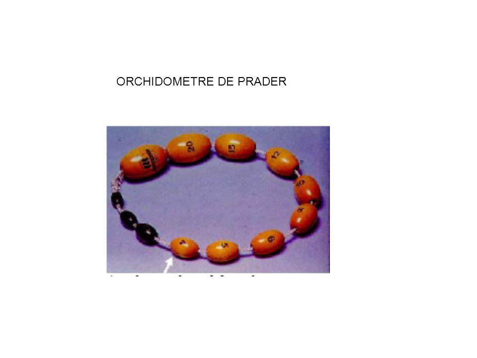 ORCHIDOMETRE DE PRADER
