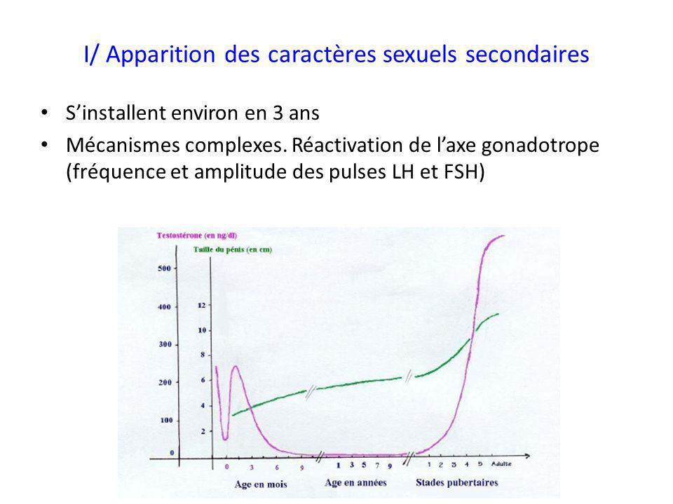 I/ Apparition des caractères sexuels secondaires