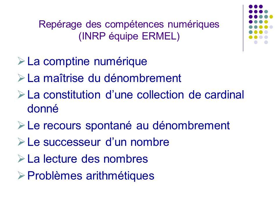 Repérage des compétences numériques (INRP équipe ERMEL)