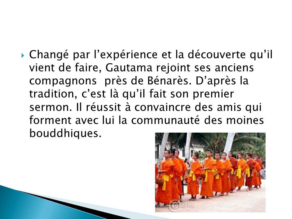 Changé par l'expérience et la découverte qu'il vient de faire, Gautama rejoint ses anciens compagnons près de Bénarès.