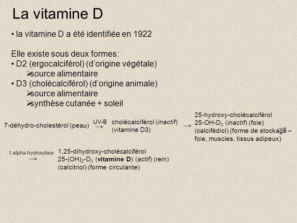 La vitamine D la vitamine D a été identifiée en 1922