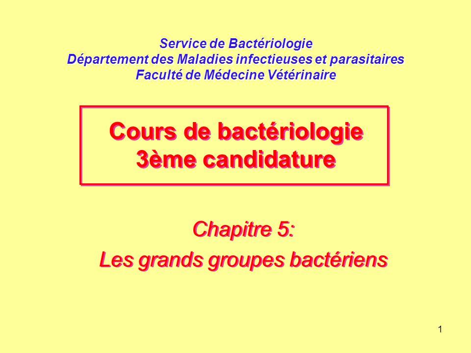 Chapitre 5: Les grands groupes bactériens