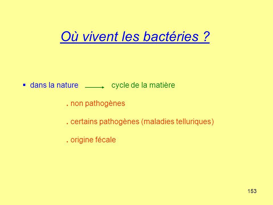 Où vivent les bactéries