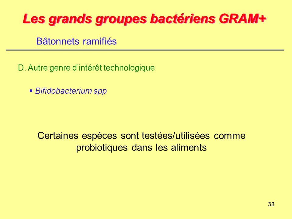 Les grands groupes bactériens GRAM+