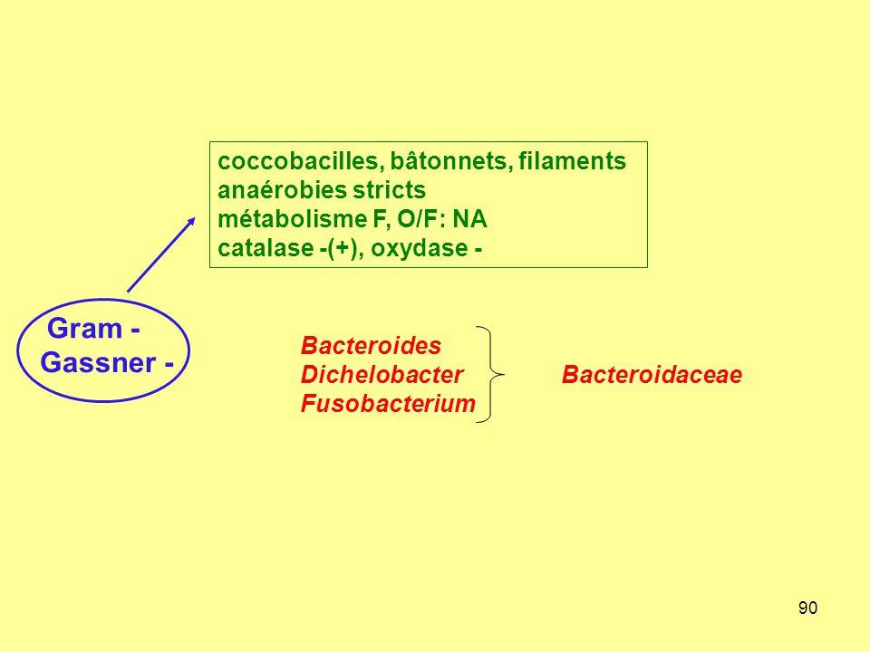 coccobacilles, bâtonnets, filaments anaérobies stricts