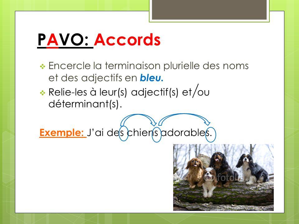 PAVO: Accords Encercle la terminaison plurielle des noms et des adjectifs en bleu. Relie-les à leur(s) adjectif(s) et ou déterminant(s).