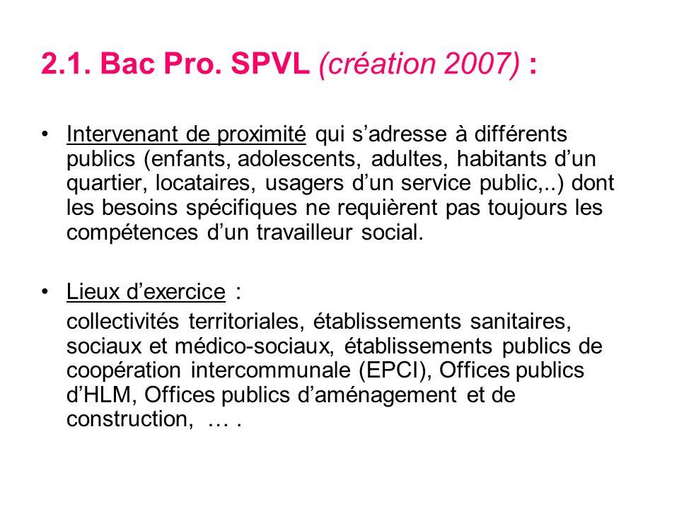2.1. Bac Pro. SPVL (création 2007) :
