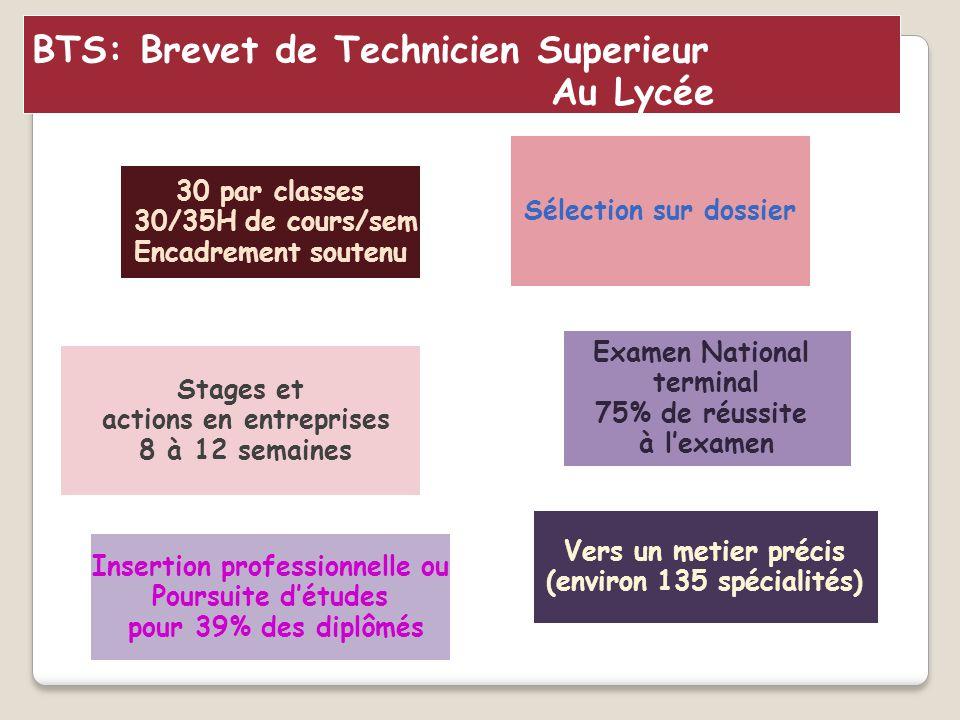 BTS: Brevet de Technicien Superieur Au Lycée